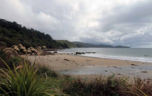 Lee Bay, at the northern end of the Rakiura Track.