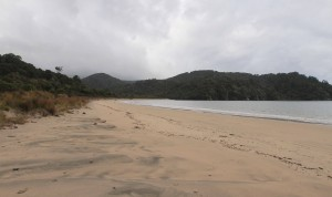 Māori Beach.
