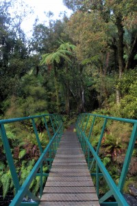 A footbridge on the trail.