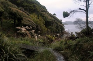 A small bridge with Stewart Island's inlet in the background.