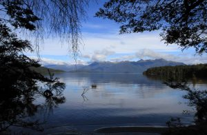 Lake Manapouri.