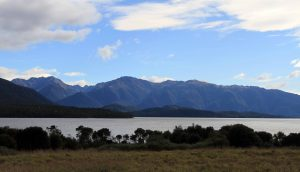 Lake Te Anau, seen from the Lakeside Track (the trail that connects the Kepler Track to the town of Te Anau).