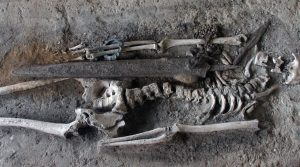 The exhumed contents of a Bronze Age tomb on display in the National Museum.