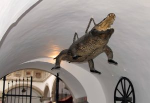 The Brno Dragon on display in the entrance to the Old Town Hall.