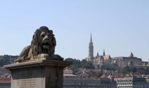 One of the guardian lion statues at the Chain Bridge, with Matthias Church in the distance, on Castle Hill.