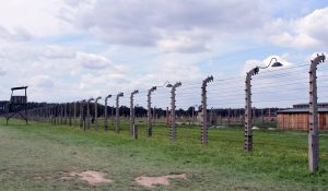 The electric fence around the Auschwitz II-Birkenau concentration camp.