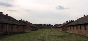 More barracks at Auschwitz II-Birkenau.