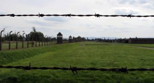 Looking through the barbed wire at Auschwitz II-Birkenau.