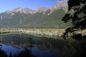Mirror Lake, seen during a bus stop while traveling from Te Anau to the start of the Routeburn Track at the Divide Shelter.