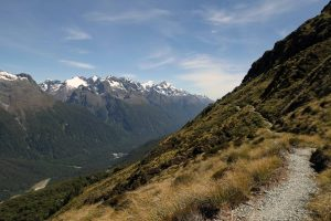 The trail continuing along the eastern side of the Hollyford River Valley.