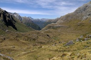 The terrain between Lake Harris and Routeburn Falls Hut.