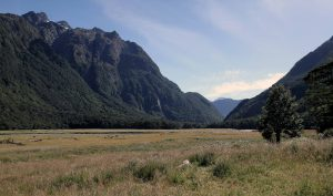 Hiking in Routeburn Flats.