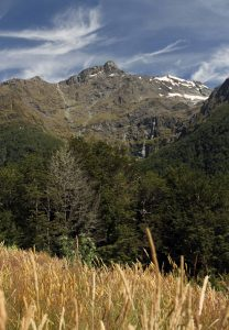View of the mountains and a waterfall from the meadow at the Routeburn Shelter (located at the terminus of the track).