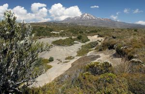 Another view of Mount Ruapehu from the track.
