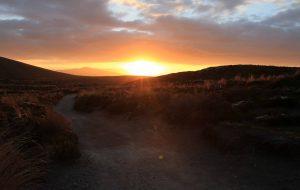 The sun setting on the trail (near Mangatepopo Hut).