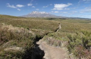 Back on the trail proper (reunited with my backpack), looking at Mount Ruapehu whilst hiking toward Whakapapa Village (the end of the track).