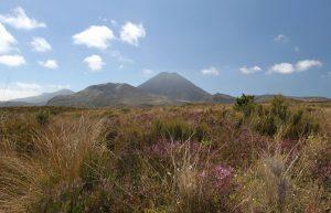 One last view of Mount Ngauruhoe, seen near the end of the Tongariro Northern Circuit (near Whakapapa Village).