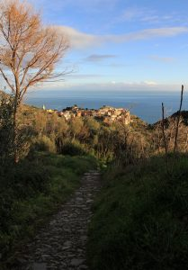 The stone path leading to Corniglia.