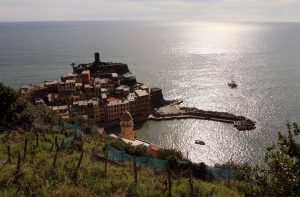 Vernazza, seen from the mountainside.