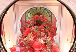 Looking up at the stained glass dome inside the QVB, which has been decorated to celebrate the Chinese New Year.