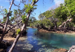 The Blue Lagoon near Eton Village.