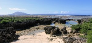 The coral with Emao Island in the distance; at the beach next to the restaurant near Onesua Village.