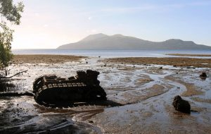 Abandoned U.S. tank from World War II; located at the northern end of Efate Island.